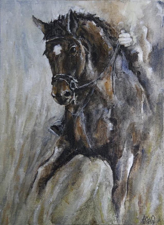 Paard Tamara in actie.