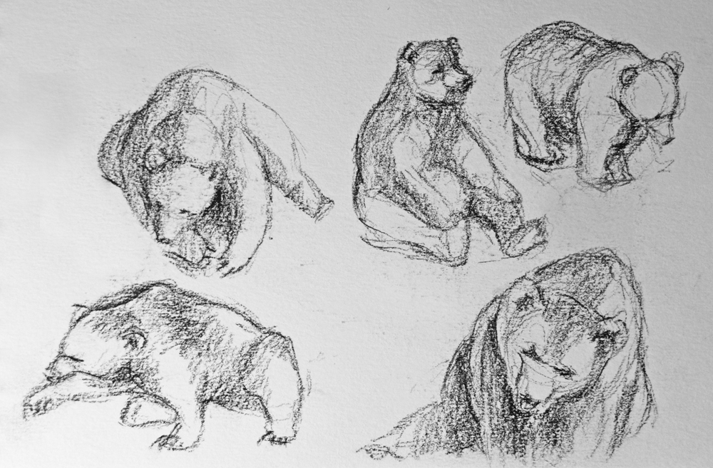 Europese bruine beren